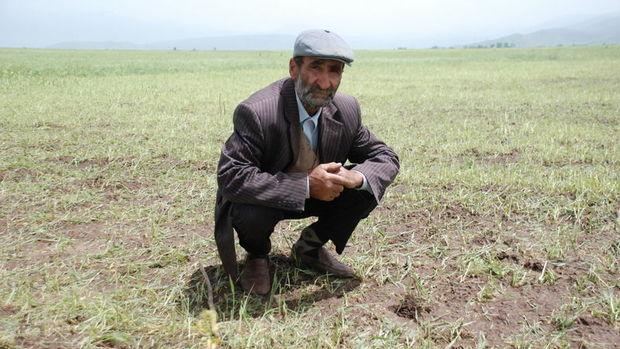 Analiz: Çiftçinin %88'inin cebinde para yok