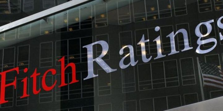 Fitch, Hindistan