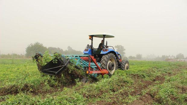 Tarımsal üretime düşük faizli kredi verilecek