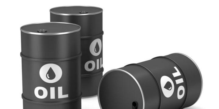 Ham petrol ithalatı şubatta arttı