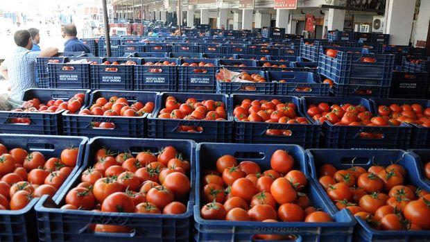Rusya: Gıdaların tamamen yasaklanması düşünülmüyor