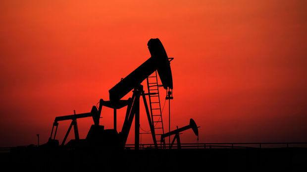 Petrol ABD'de üretimin düşmesinden güç alıyor