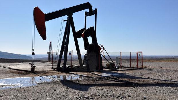 OPEC petrol üretimi Nijerya öncülüğünde yükseldi