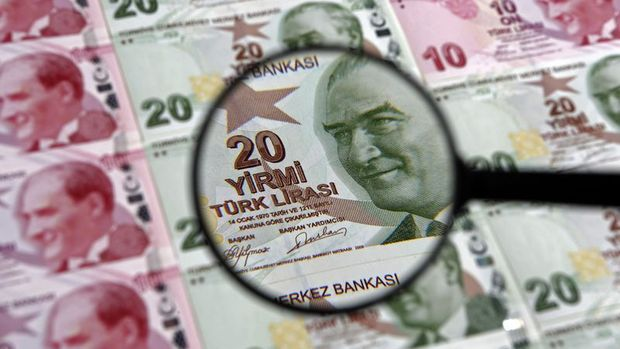 Roubini: Türkiye temizlenerek güven kazanmak istiyor