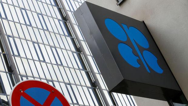 OPEC gelecek ay petrol fiyatlarındaki düşüşü değerlendirecek