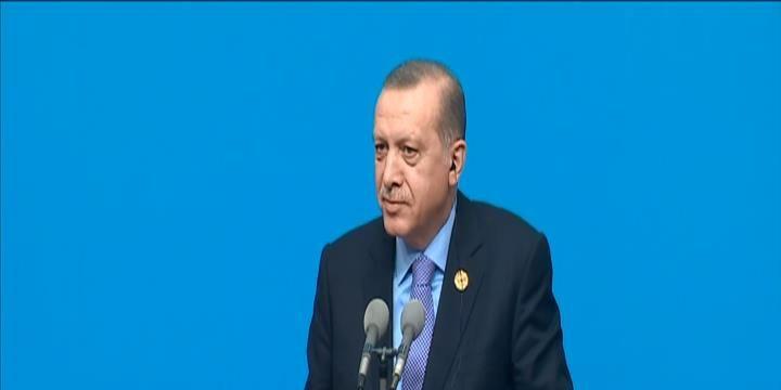 Erdoğan: DAİŞ