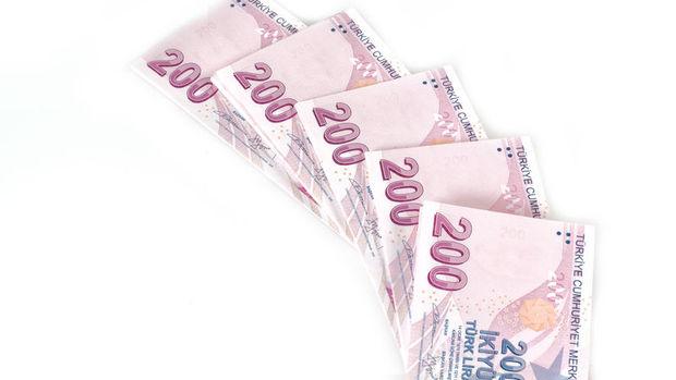 Varlık fonu ekonomik istikrarın sigortası olacak