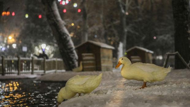 Ankara ve 17 ilde okullar kar nedeniyle tatil