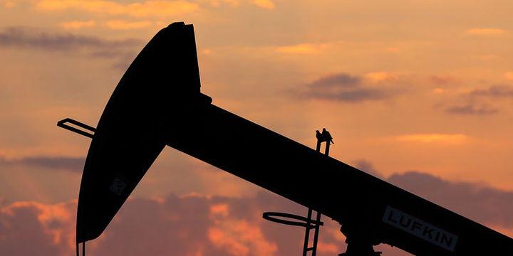 """Petrol """"stok"""" verisi öncesi değer kazandı"""