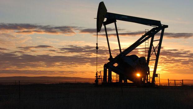 Shell&Turcas AŞ'den hisse alım açıklaması