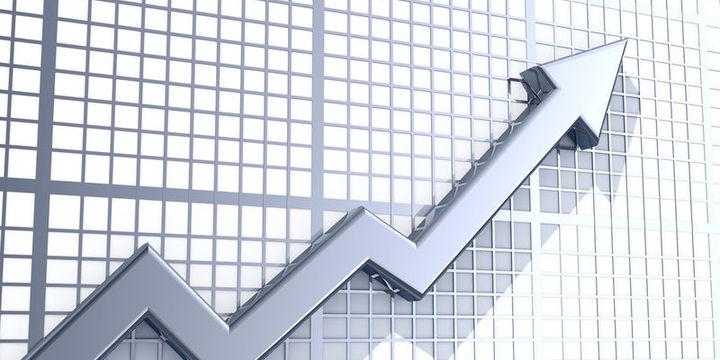Enflasyonu gıda, enerji fiyatları ile döviz kuru besledi