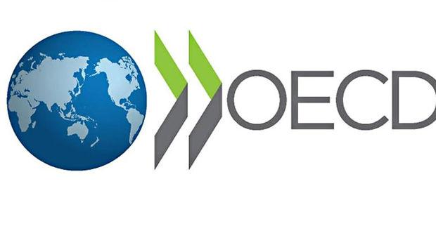OECD'de en fazla vergiyi Belçikalı ödüyor