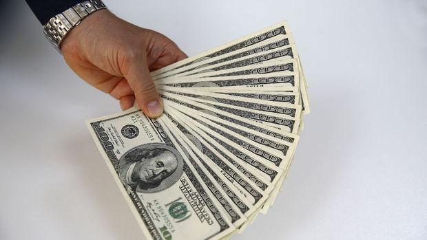 Dolar/TL 3.59'u aştı