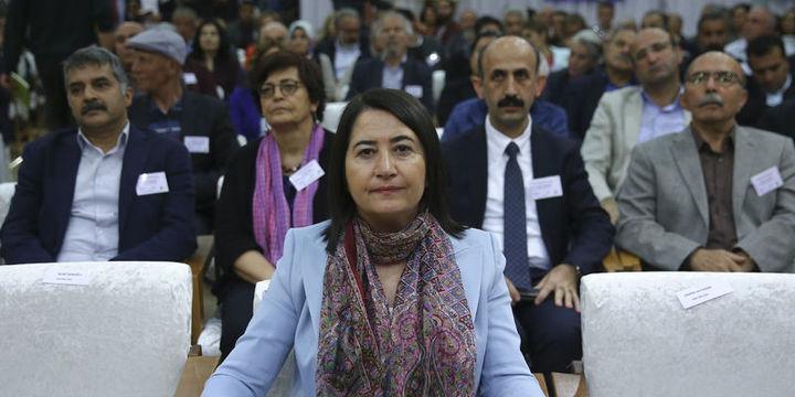 HDP Eş Genel Başkanı Serpil Kemalbay oldu