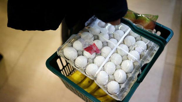 Yumurta üretimine