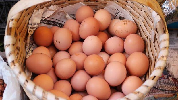 Bandırma'da saniyede 29 yumurta üretiliyor