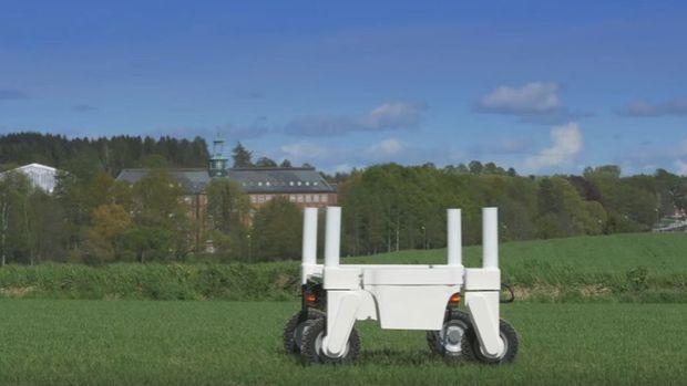 Brexit sonrası göçmen tarım işçilerinin yerini robotlar mı alacak?