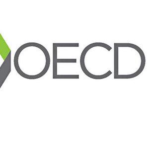 OECD: (TÜRKİYE'DE) POLİTİKA FAİZİNDE DOĞRUDAN ARTIRIMA İHTİYAÇ VAR