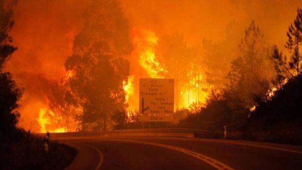 Portekiz'de orman yangını: 62 ölü