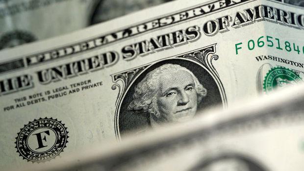 Türkiye'de yerleşiklerin döviz mevduatı 165 milyar dolara geriledi