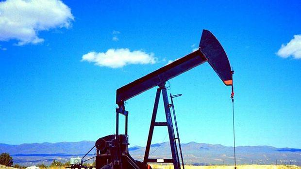 Petrol ABD'de üretimin verisi ile yükselişini durdurdu