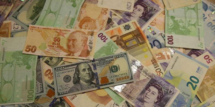 Dolar/TL Fed