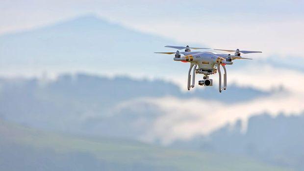 Kanada'da uçak inişte drone ile çarpıştı