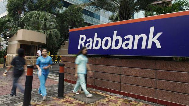 Rabobank/Matys: Vize krizi için olumlu yorumlar TL için pozitif
