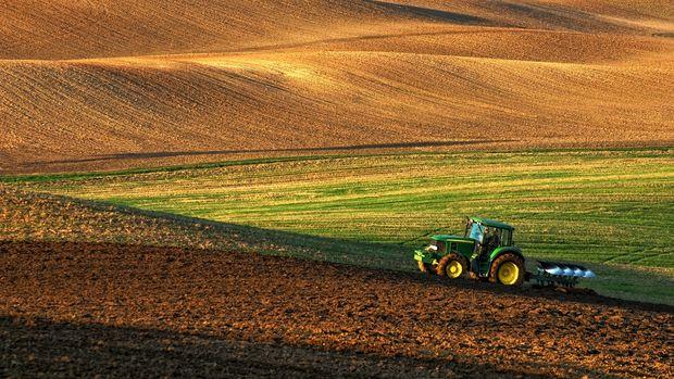 Tarım Bakanlığı 2018'de havza bazlı desteklenecek ürün listesini yayımladı
