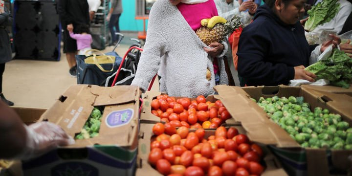 Küresel gıda fiyatları geçen yıl yüzde 8,2 arttı