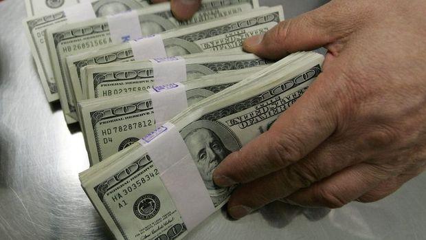 Özel sektör yurt dışı uzun vadeli borcu Kasım'da 217.7 milyar dolar