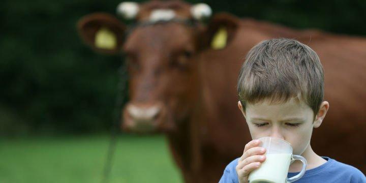 Çiğ süt fiyatına Gıda Komitesi ayarı