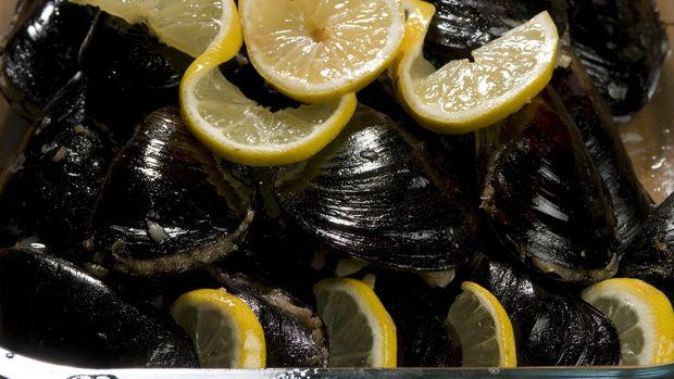 1,1 ton kaçak midye ele geçirildi