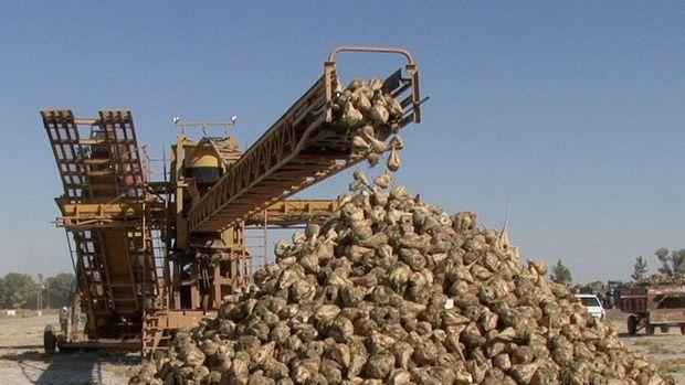 Bor Şeker Fabrikası için en yüksek teklifi Doğuş verdi