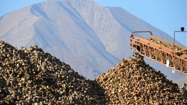 3 şeker fabrikası için 1.5 milyar TL teklif alındı