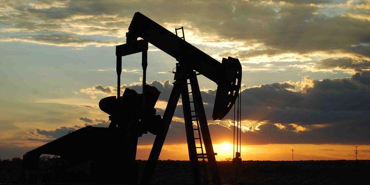 """""""Petrolde 300 dolar varil fiyatı imkansız değil"""""""