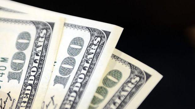Yurt içi yerleşiklerin döviz mevduatı 499 milyon dolar arttı