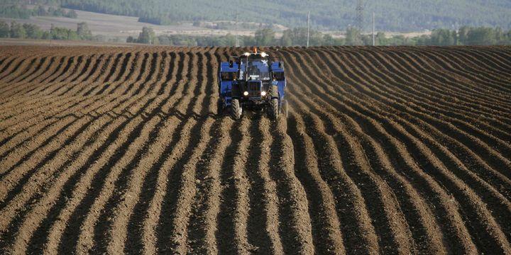 """""""Tarım topraklarımızın yüzde 99'unda organik madde içeriği düşük"""""""