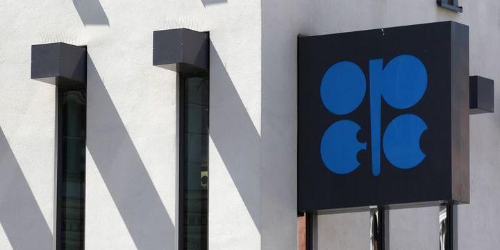 Uzmanlar OPEC