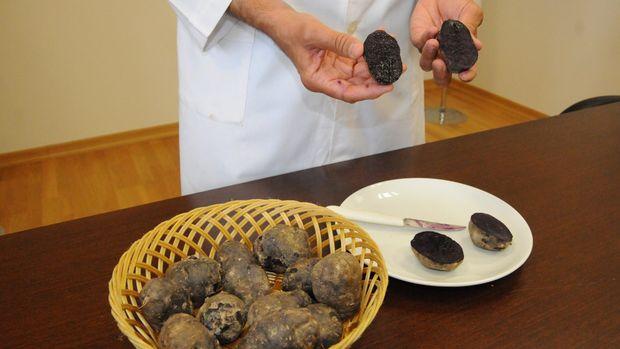 Niğde'de mor patates üretildi