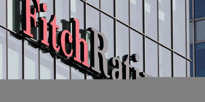 Fitch 24 Türk Bankası