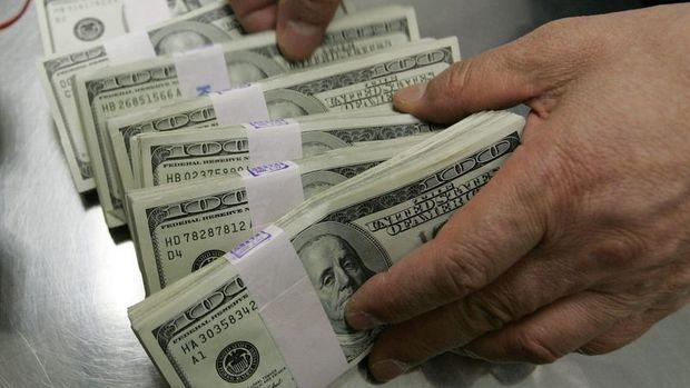 Yurt içi yerleşiklerin döviz mevduatı 775 milyon dolar arttı