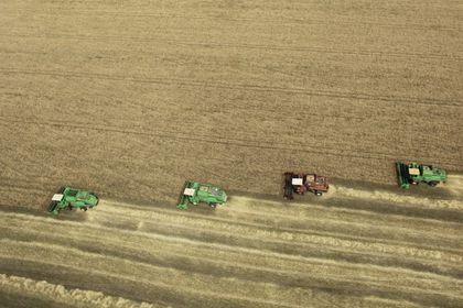 FAO Gıda Fiyat Endeksi Temmuz'da sert düştü