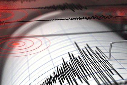 Datça'da 4,9 büyüklüğünde deprem