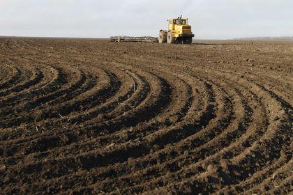 Suudiler Ukraynalı tarım şirketi Mriya'yı satın...
