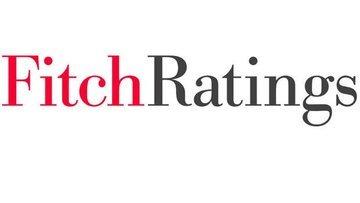 Fitch: Döviz kontrat düzenlemesi DPR akışını düşürebilir