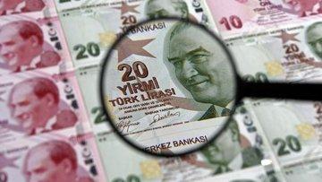 """""""Türk Lirası'nı korumak için bir takım adımlar atılıyor"""""""