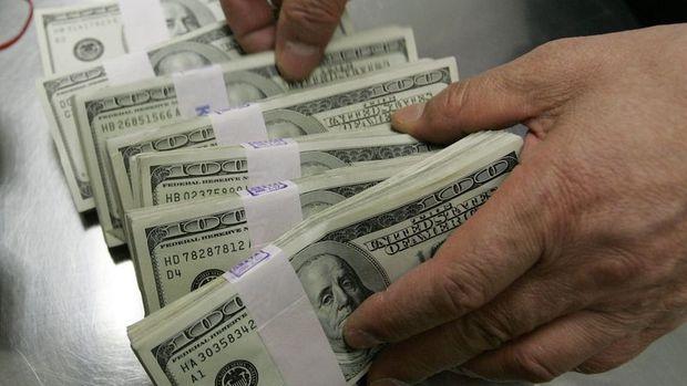 Yurt içi yerleşiklerin döviz mevduatı 78 milyon dolar arttı