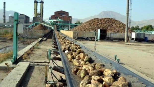Şeker fabrikalarının arsaları da satılıyor