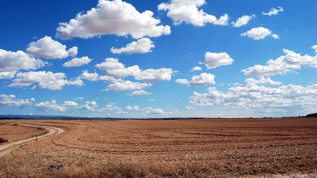 Hazine'ye ait tarım arazilerine 23 bine yakın başvuru